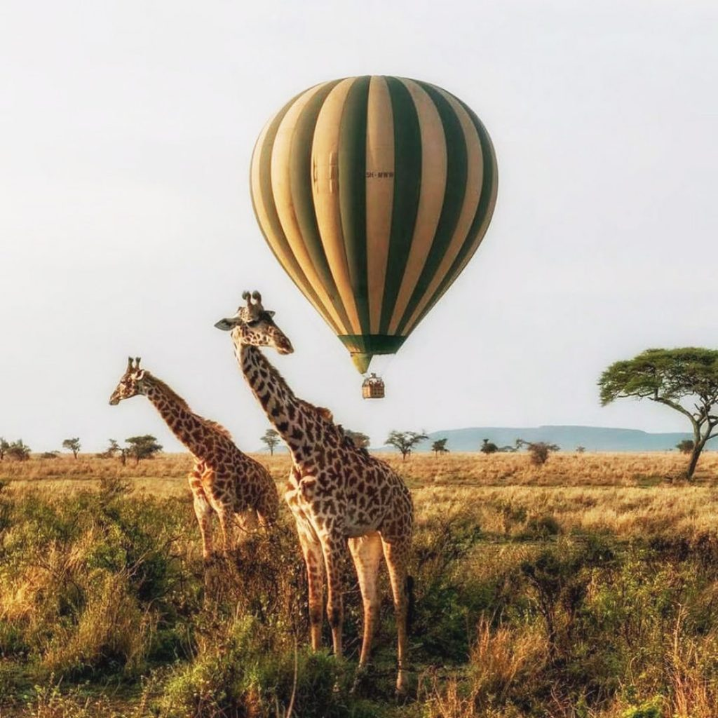 primer viaje a Africa
